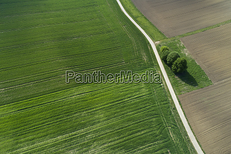 aerial view of rural road through