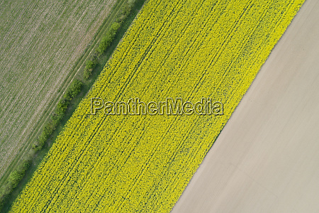 abstract aerial view of agricultural fields