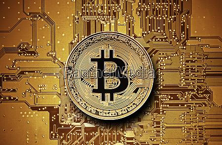 bitcoin golden coin on computer circuit
