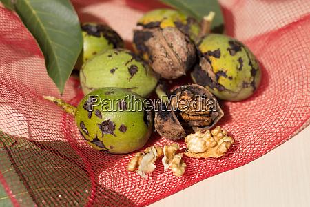 walnuts hit by hail