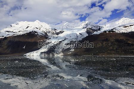 glacier in college fjord southeast alaska