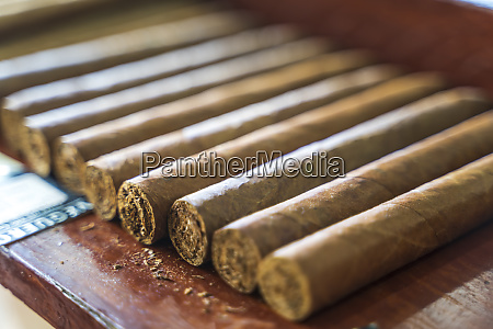 cigars vinales pinar del rio province