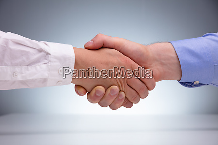 two businessman shaking hands together