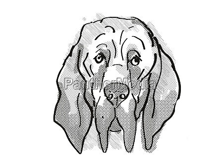 bloodhound dog breed cartoon retro drawing
