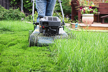 clsoeup of a lawnmower cutting tall