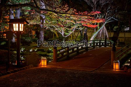 illuminated kenrokuen garden during momijigari season
