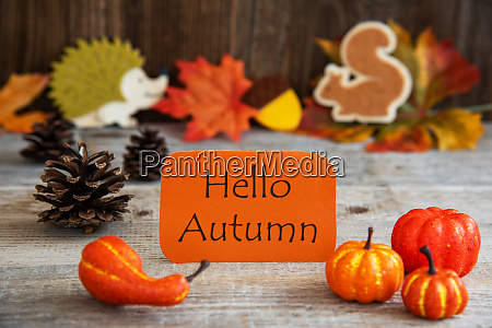label with autumn decoration text hello