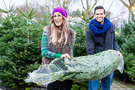 couple carrying bought christmas tree