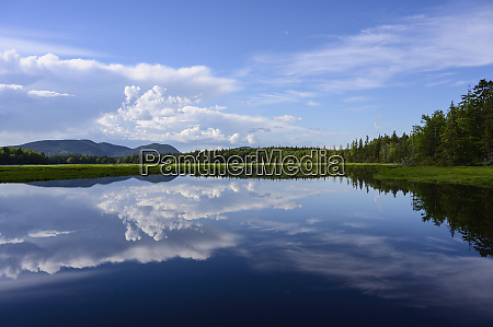 clouds reflected in lake in acadia