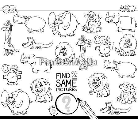 find two same wild animals coloring
