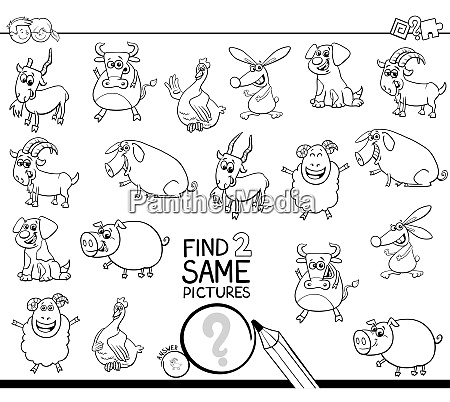 find two same farm animals coloring