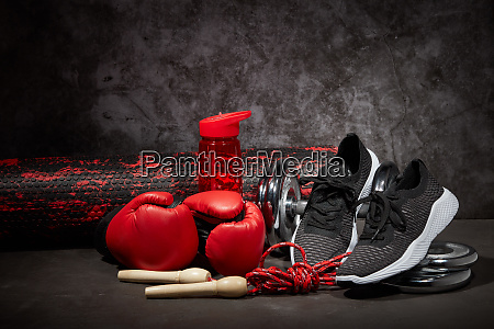 fitness sports equipment