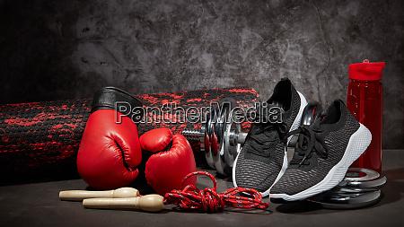 fitness sports equipment