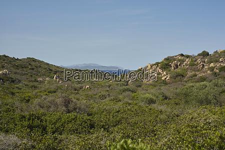 sardinian panorama 2