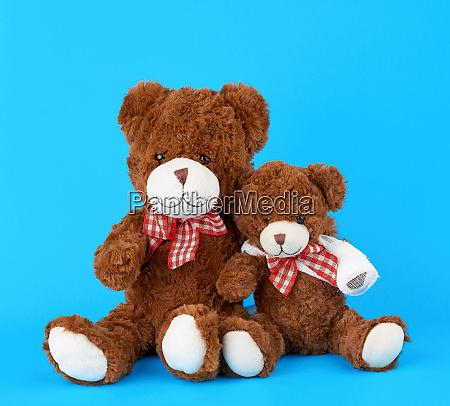 two teddy bears on a blue