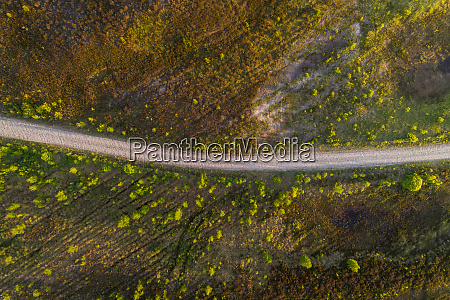aerial view road passing on growing