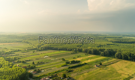 aerial view of meadows and forest