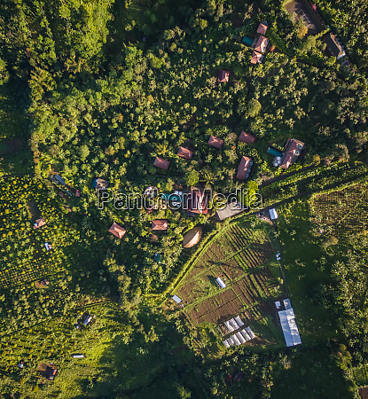 aerial view of green hilly hamlet