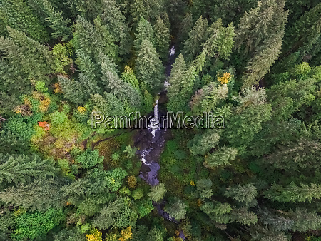 aerial view of silver falls state