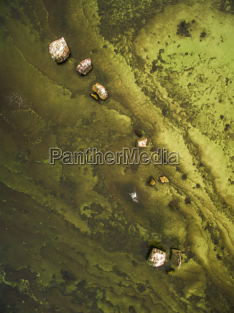 abstract aerial view of greenish baltic