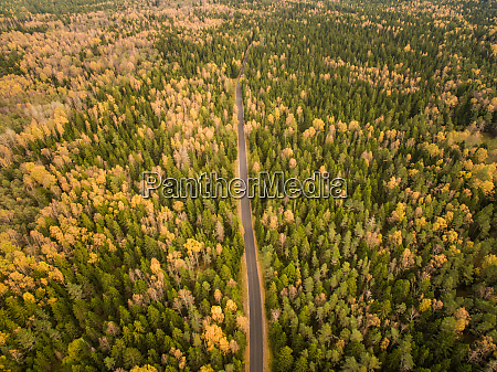 aerial view of a straight road