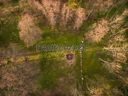 aerial view of a wood at