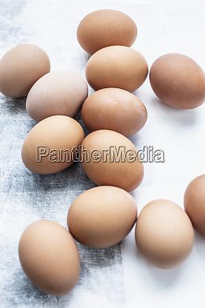 still life of a dozen eggs