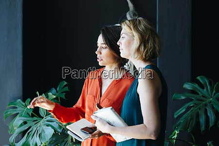 businesswomen having discussion in office