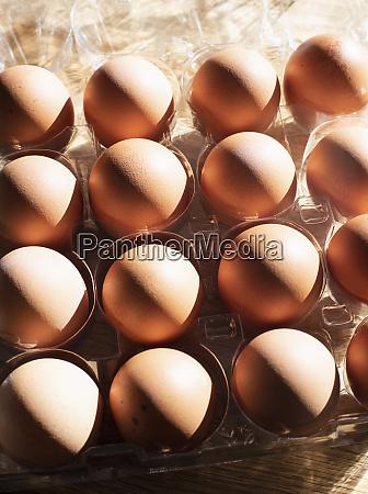 still, life, of, eggs, in, egg - 27458407