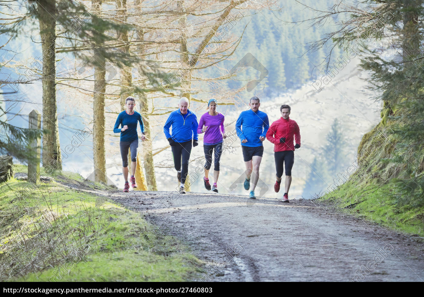 family, jogging, in, woods - 27460803