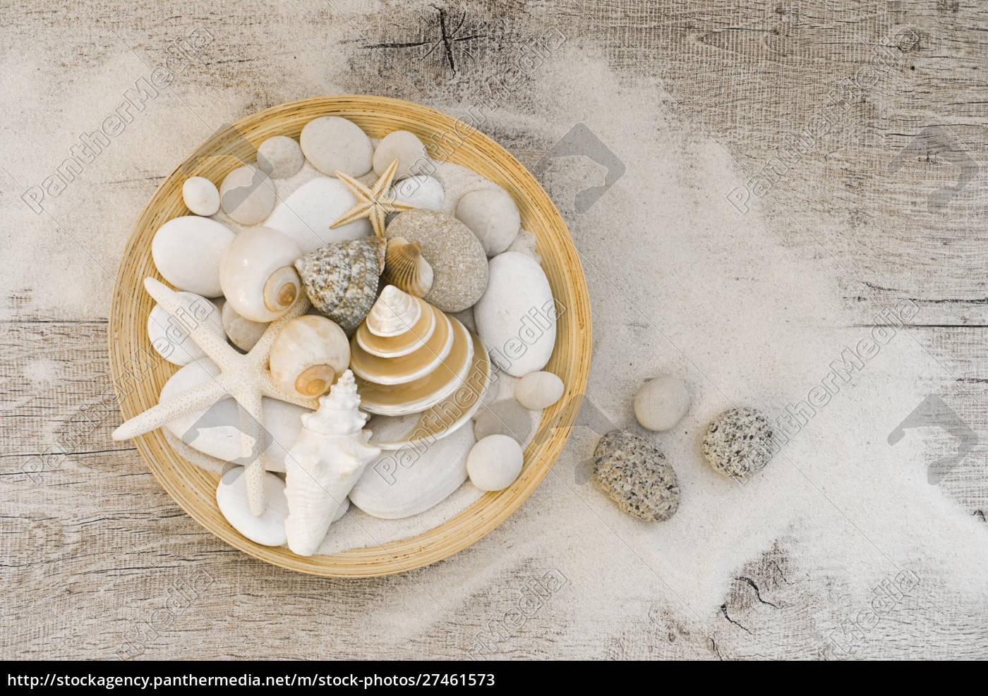 coastal, still, life, bowl, with, shells - 27461573