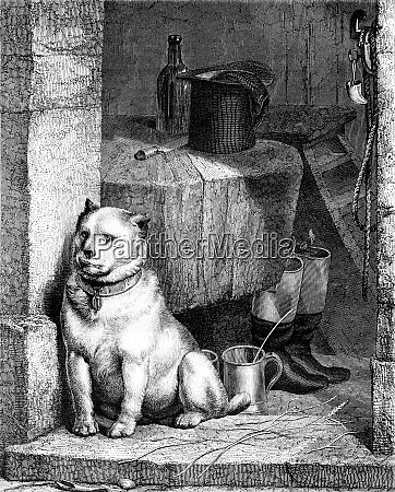 the servant of the dog by