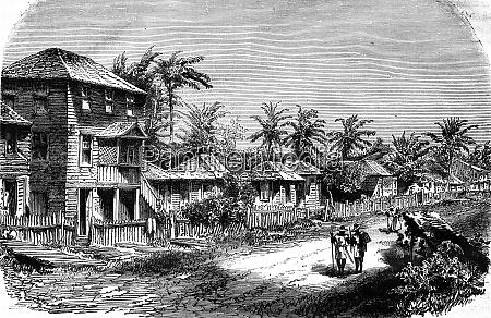 a village in the tropics vintage
