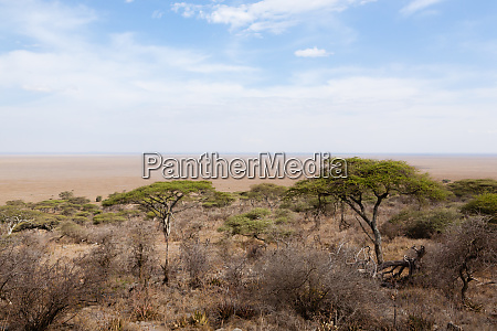road to serengeti national park tanzania