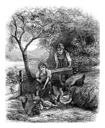 hens and girls vintage engraving