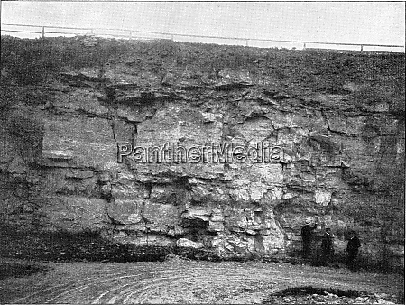 profile view of the eringsdorf limestone