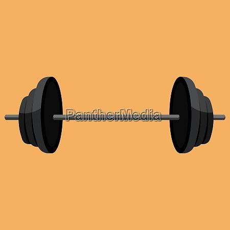 dumbbell vector color illustration