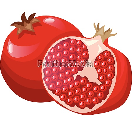vector illustration of a bright red