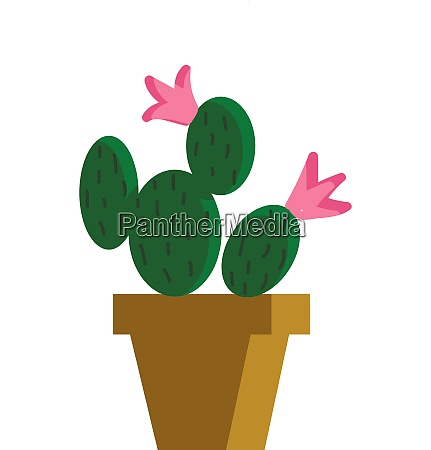 painting of a cactus plants that