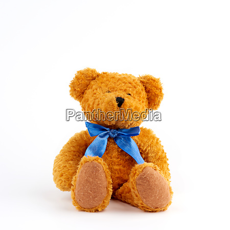 cute brown teddy bear with a