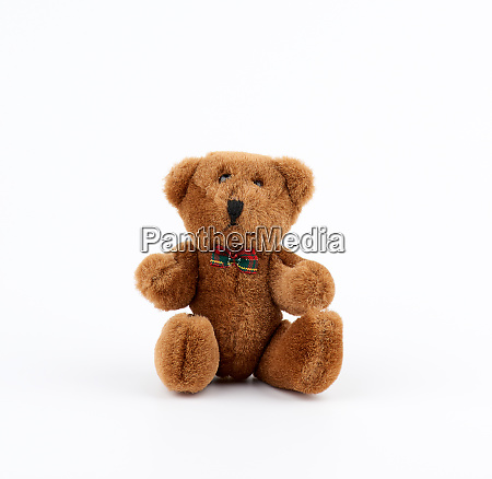 little cute brown teddy bear with