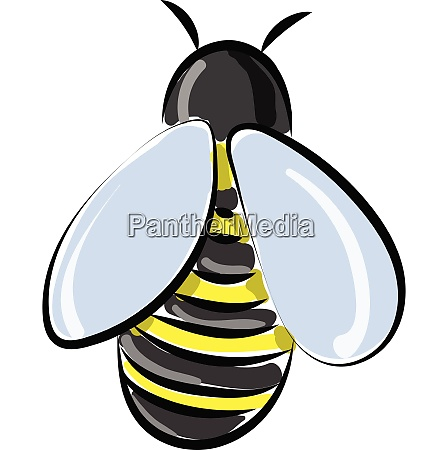 bee from back vector or