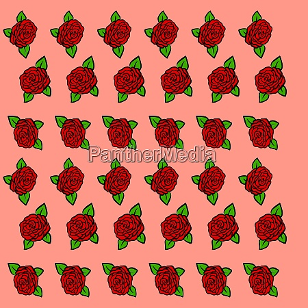 roses wallpaper illustration vector on white