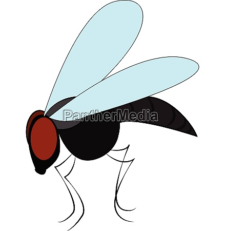 big black fly vector or color