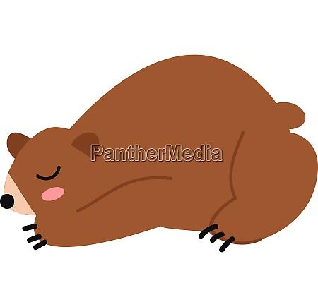 a brown bear sleeping vector or