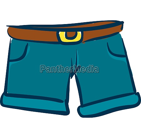 comfortable shorts vector or color illustration