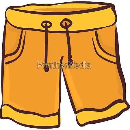 orange shorts vector or color illustration