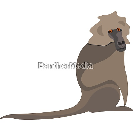 clipart of a baboon vector or