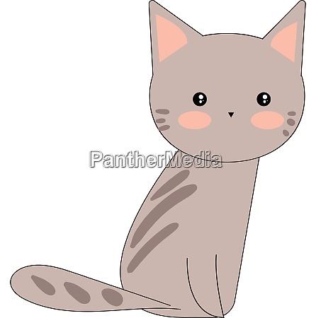 portrait of a cute grey cat