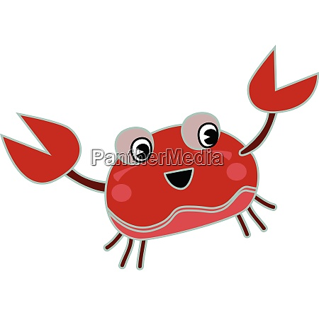 lobster crab vector or color illustration